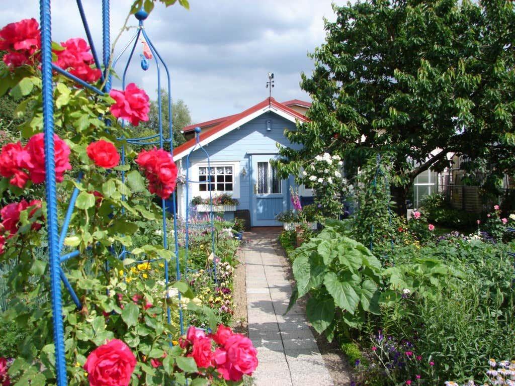 Kleingarten mit Gartenhaus und Rosen