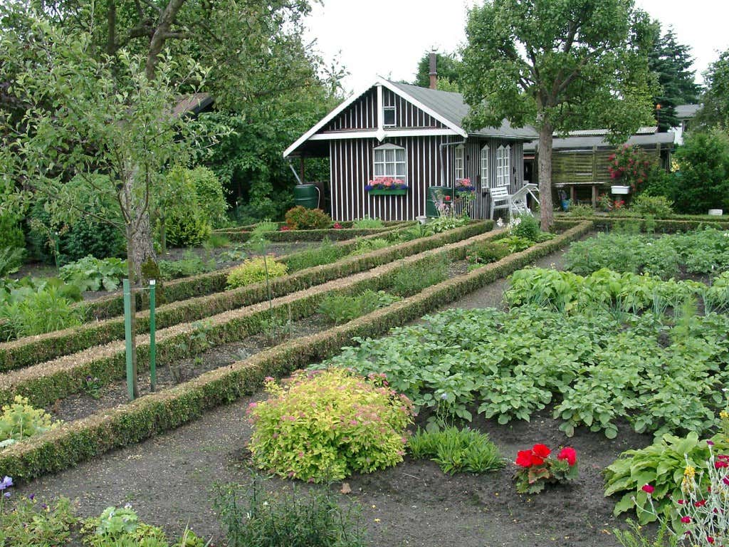 Kleingartenparzelle mit Beet