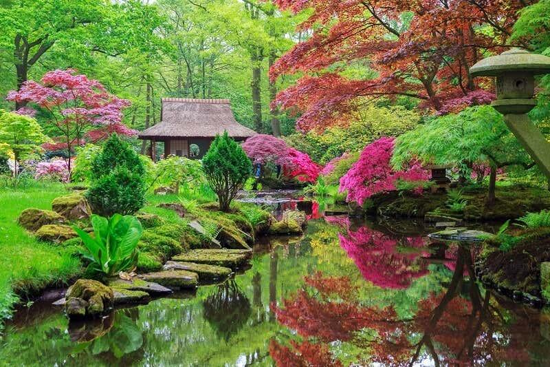 Gartengestaltung so gestalten sie ihren garten exotisch for Japanischer ziergarten