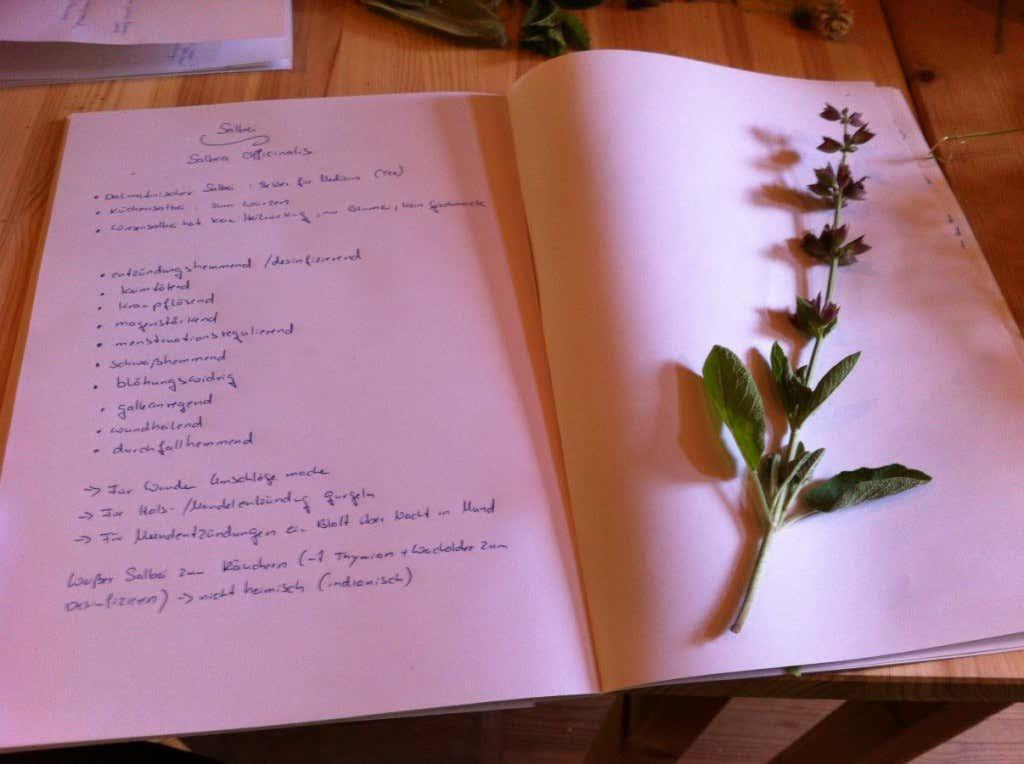Notizbuch mit Notizen zur Pflanzenkenntnis