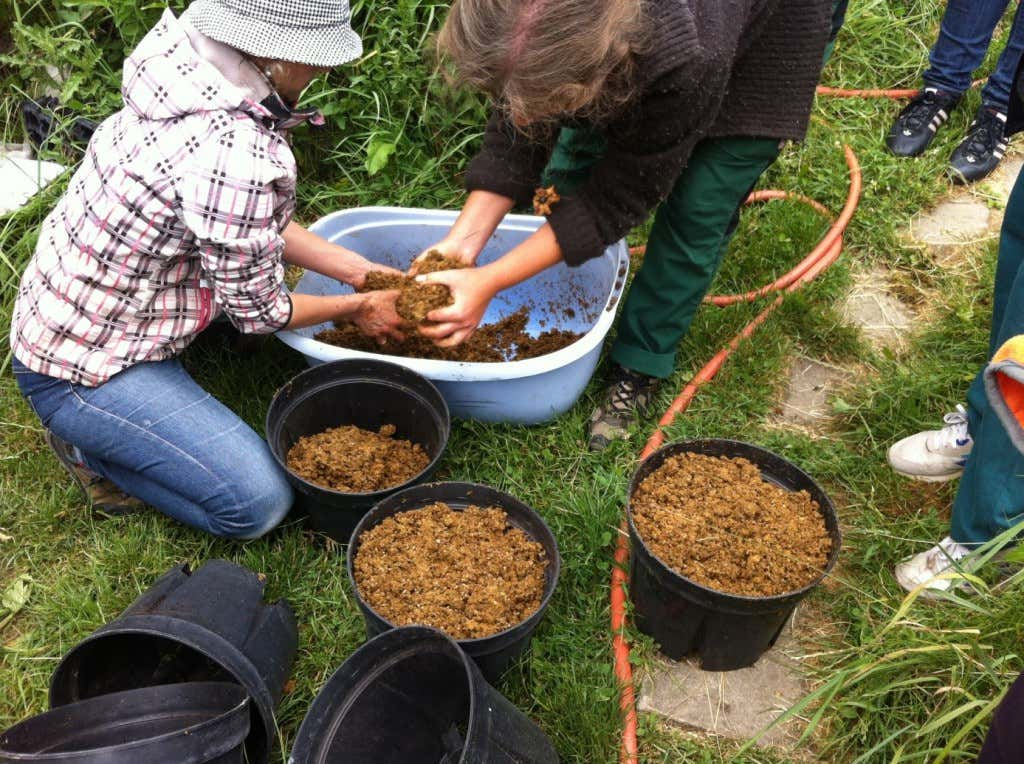 Teilnehmer des Selbstversorger-Workshops setzen Pilzgemisch an