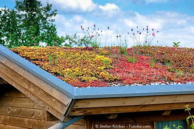 Gartenhaus Dach Anleitung