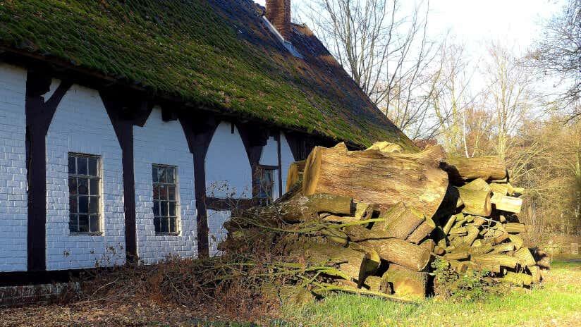 Holzhaufen aus Brennholz