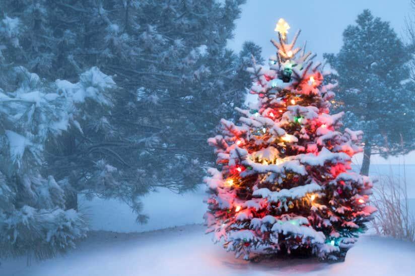 Weihnachtsdekoration im garten und zuhause - Winterlandschaft dekoration ...