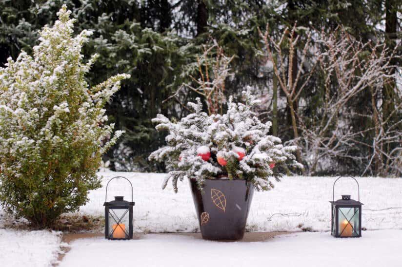 Weihnachtsdekoration im garten und zuhause for Winterdeko garten