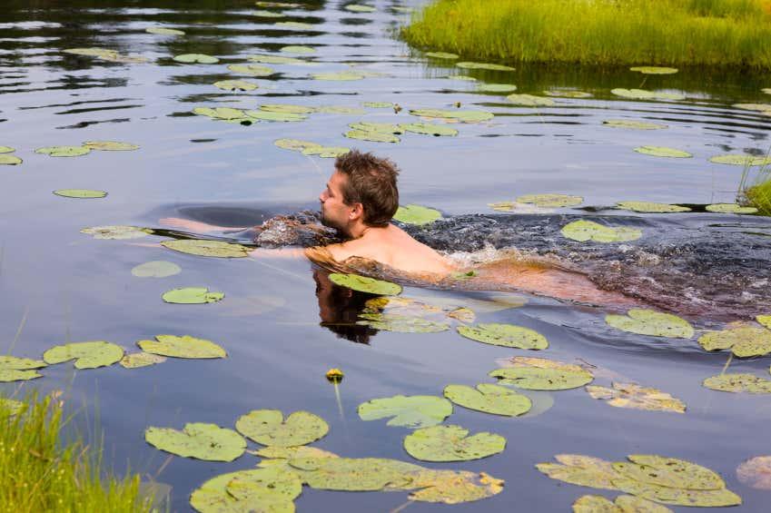schwimmender-Mann-im-Teich