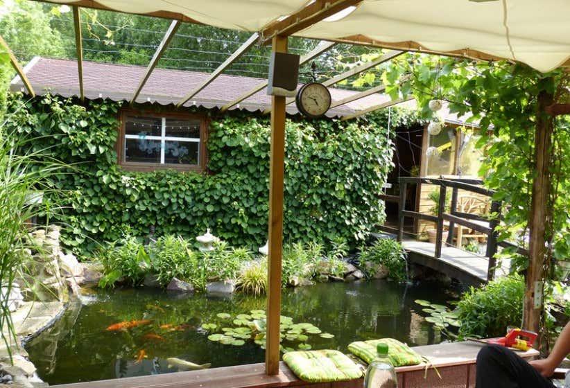 terrasse-mit-teichblick