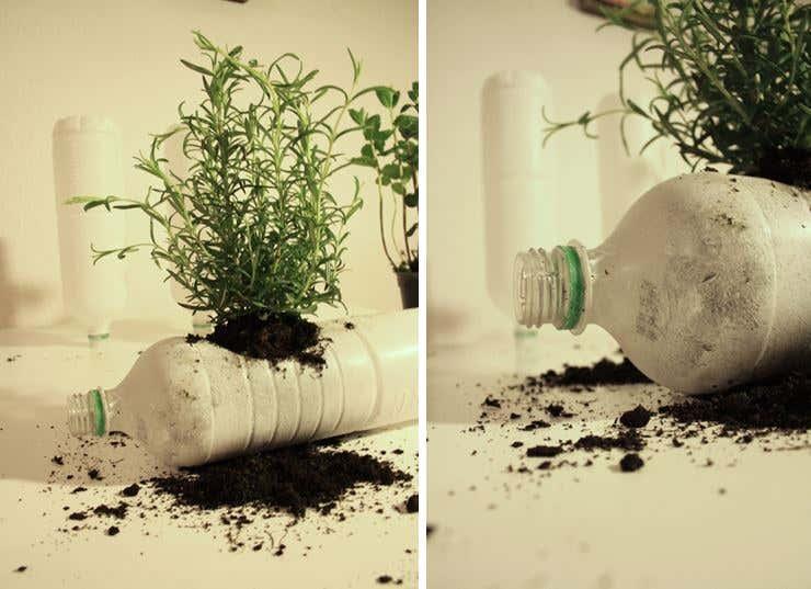Flaschen mit Erde füllen und bepflanzen