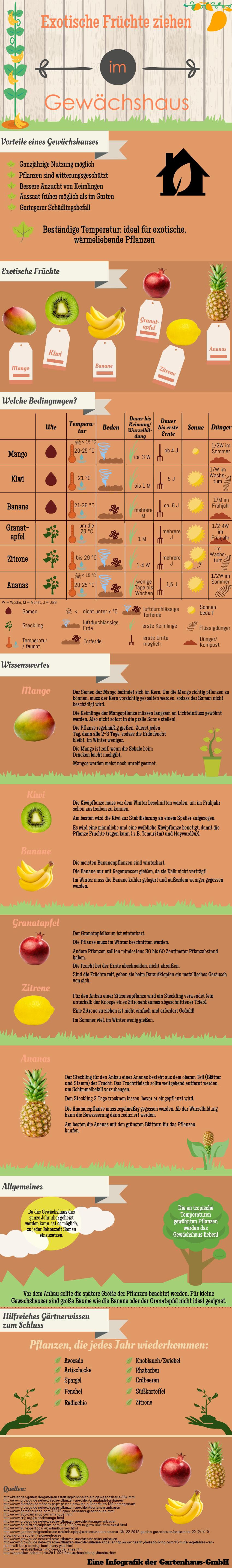 Exotische Fruechte im Gewaechshaus - Infografik