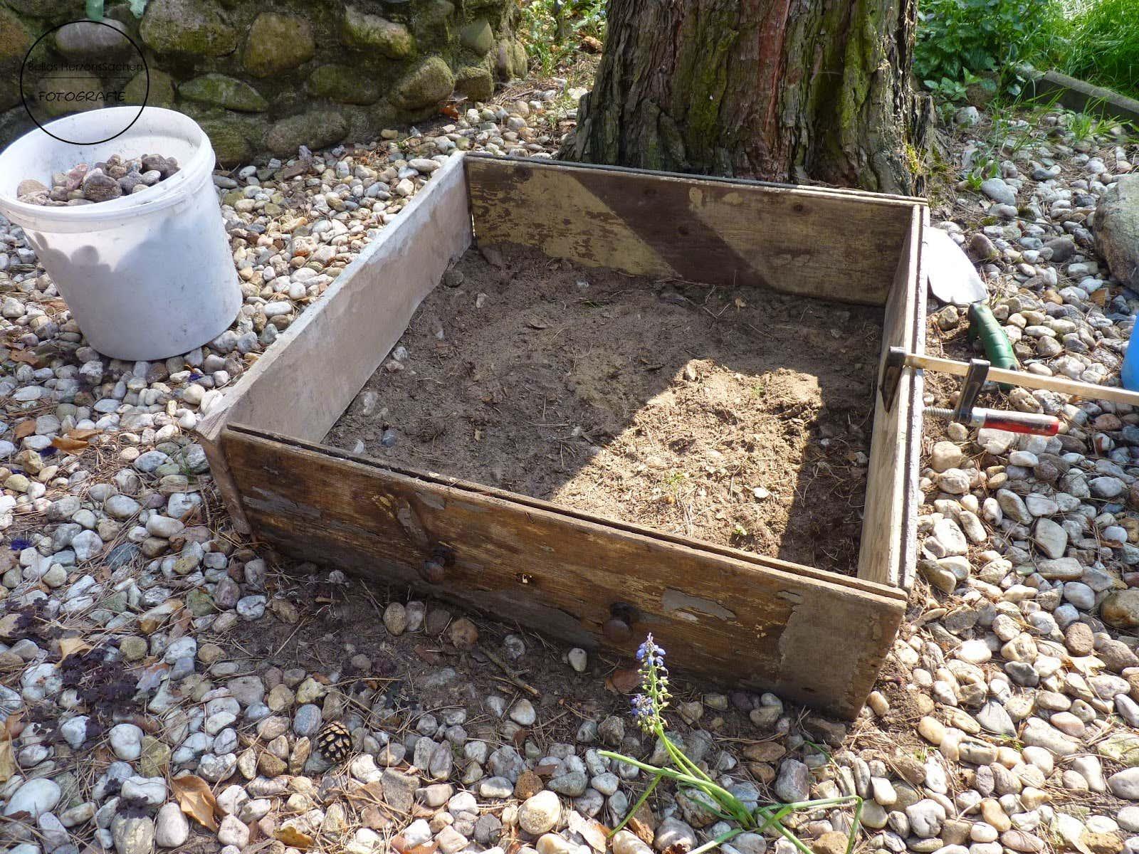 Die Kiste ist fertig, jetzt fehlen nur noch die Pflanzen.