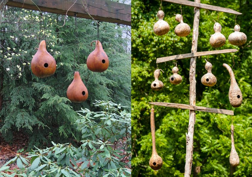 Cottage Garten Flaschenkürbisse Als Vogelhäuschen