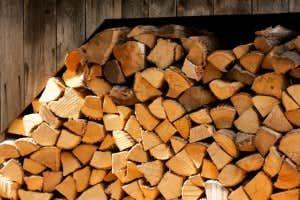 Weiche Holzarten wie Fichte, Tanne, Kiefer und Douglasie