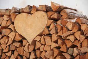 Wer Lust Hat Kann Brennholz Auch Dekorativ Anrichten Und Lagern