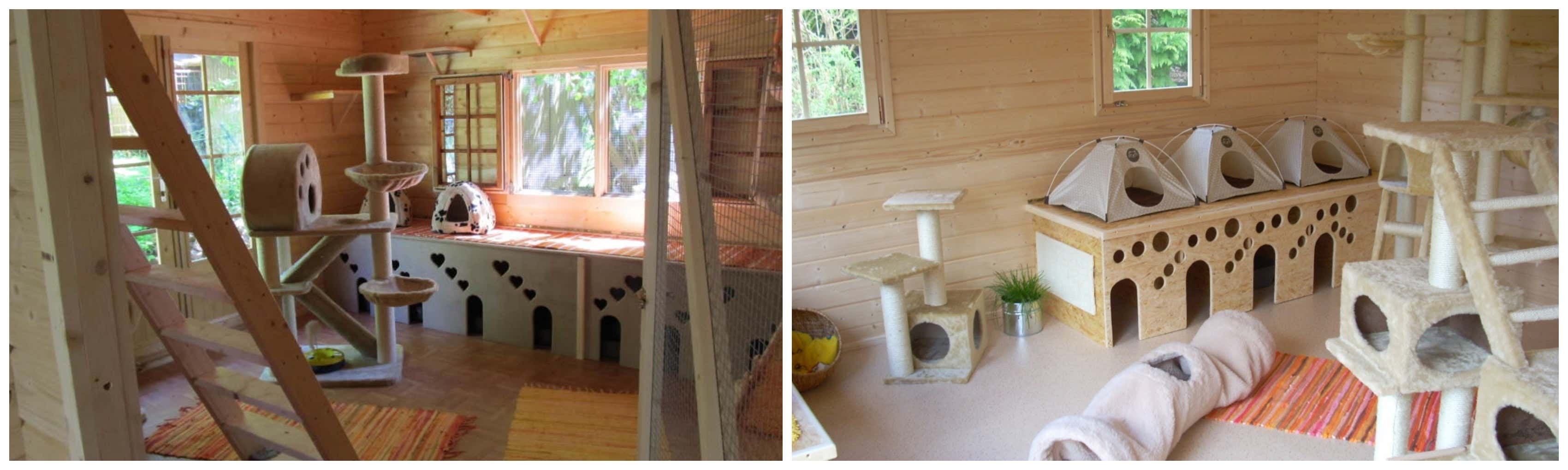tierpension im gartenhaus urlaub f r katzen. Black Bedroom Furniture Sets. Home Design Ideas