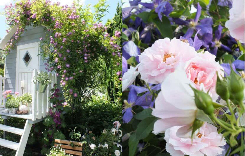 Romantischer Garten Gestaltungsideen Von Bloggerin Susan