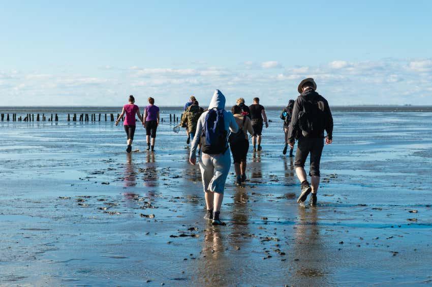 Fußgänger im Wattenmeer