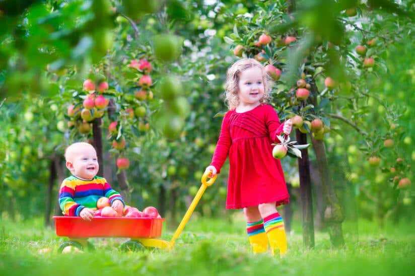 zwei süße Kleinkinder unter Apfelbäumen