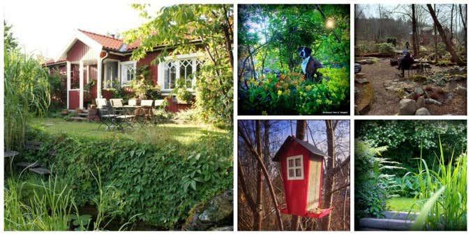 Skandinavischer stil ideen f r ihre gartengestaltung for Pflanzengestaltung garten