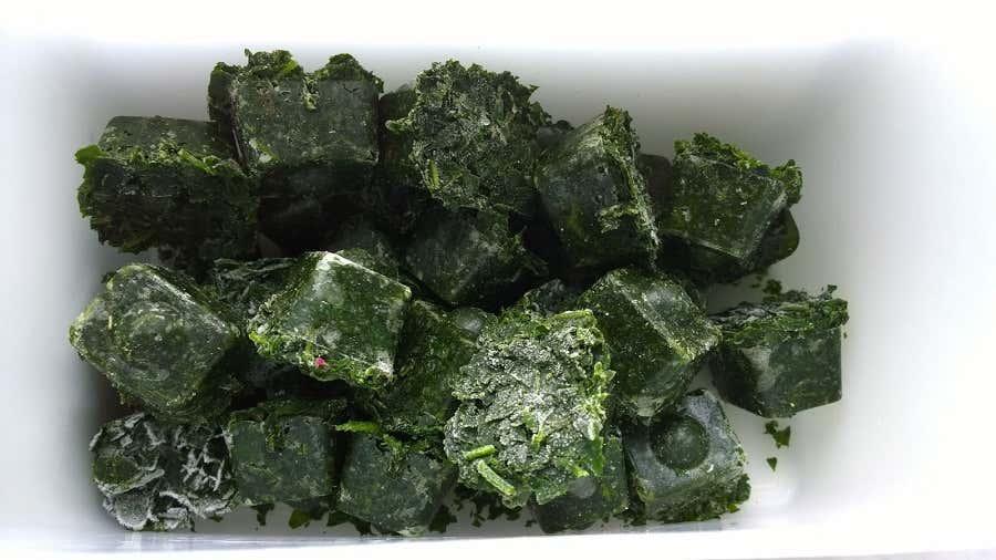 Achims fertige Spinat-Smoothiewürfel – wie Tiefkühlspinat, nur selbstgemacht.