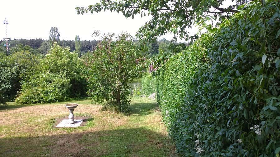 Auch Vögel fühlen sich in Achims Garten wohl und besuchen gerne die Vogeltränke.
