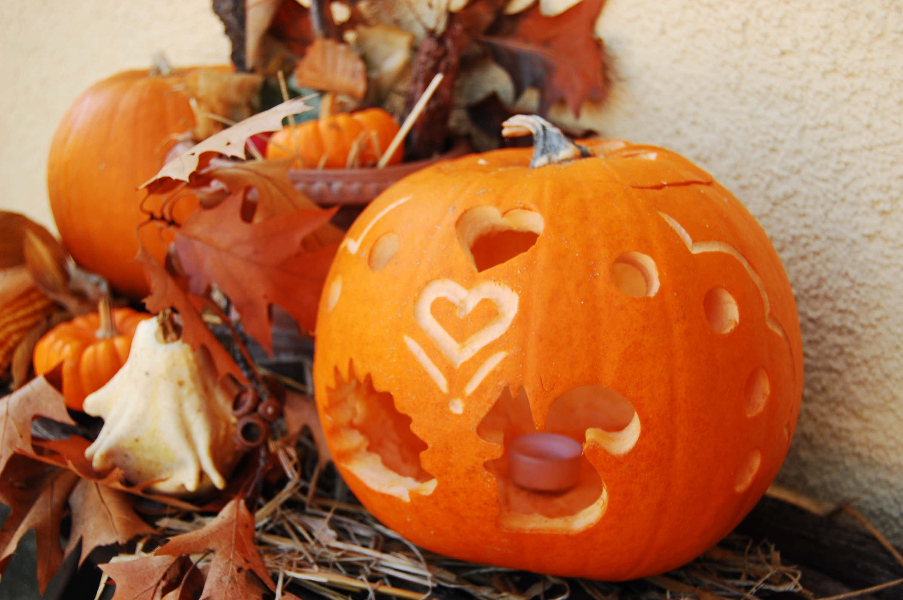 Gruselige Herbstdeko: Schaurige Inspirationen zu Halloween