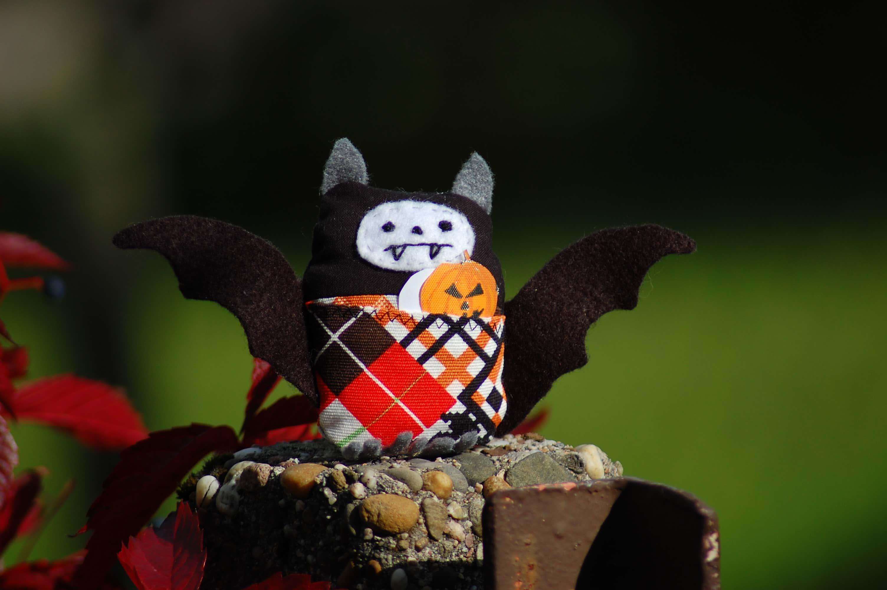 fledermaus-mit-halloween-kuerbis