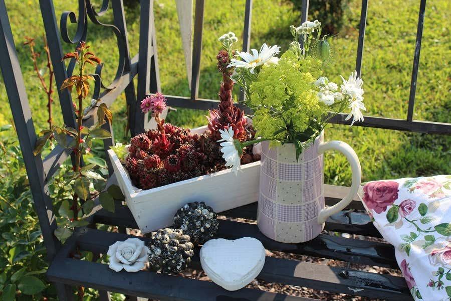 bauerngarten mit rosenpracht danielas s chsisches idyll. Black Bedroom Furniture Sets. Home Design Ideas