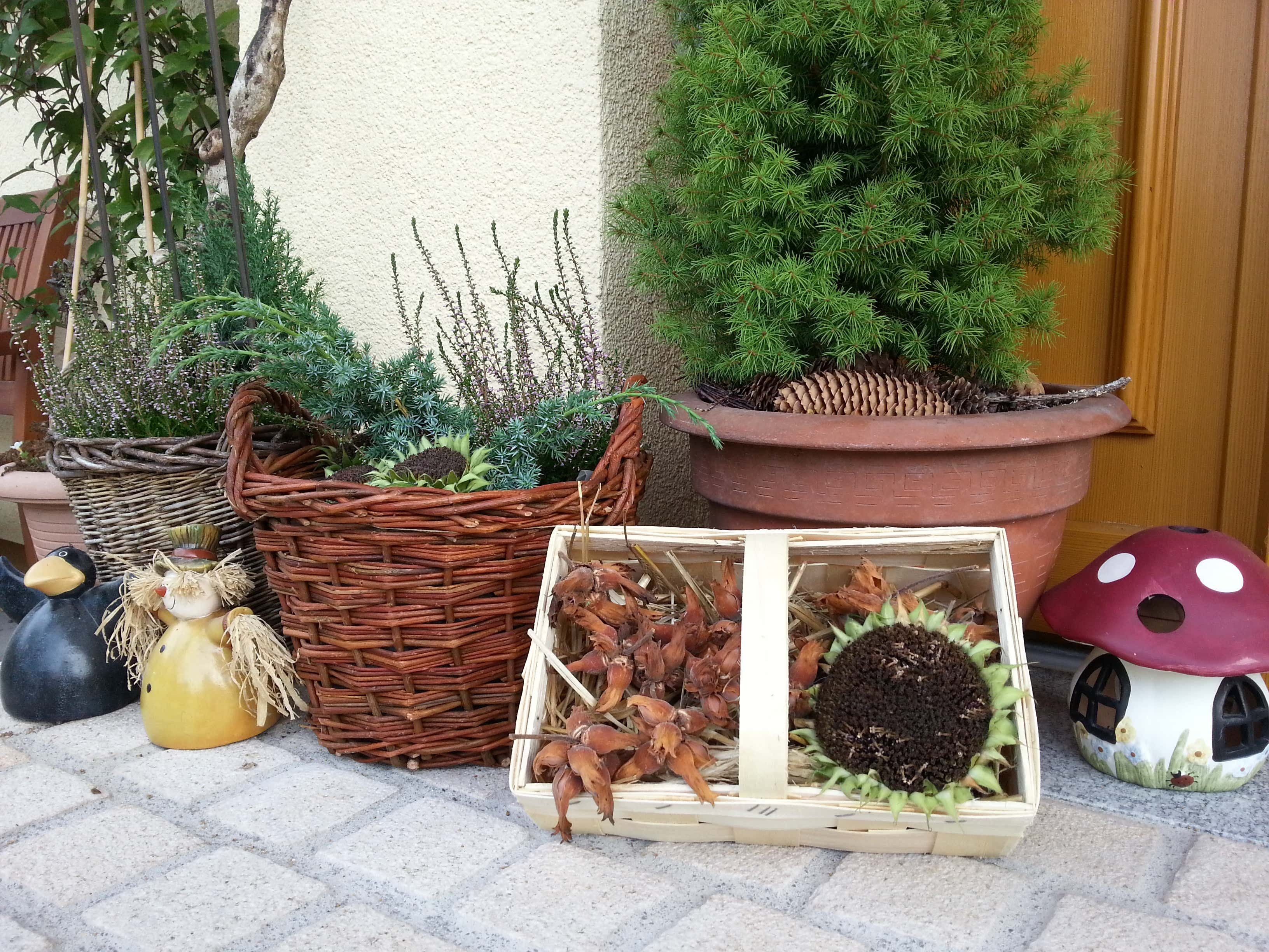 Gartendeko-Haustür-Herbst