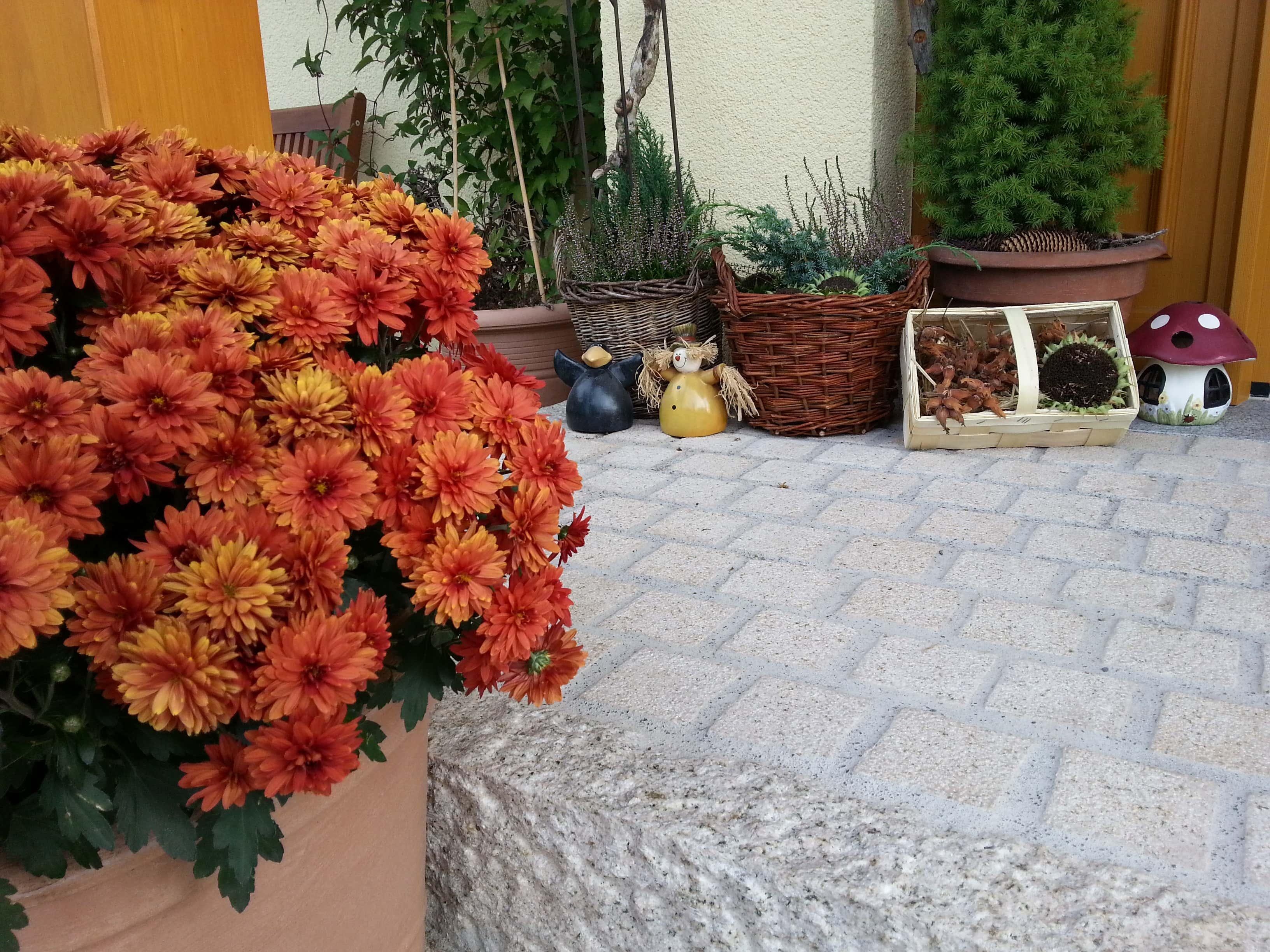 Herbstdeko ideen kreativ bunt den garten dekorieren for Garten blumen deko