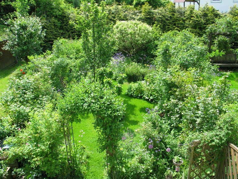 Schon Gartenhölle