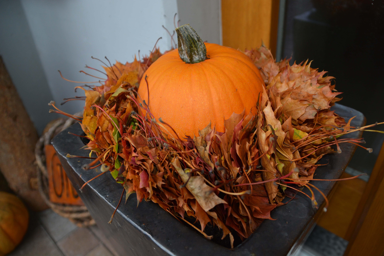 Herbstdeko ideen kreativ bunt den garten dekorieren - Herbstdeko 2017 ...