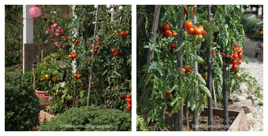 Beete Anlegen: Inspirationen Für Ihre Gartengestaltung Ein Hubsches Blumenbeet Planen