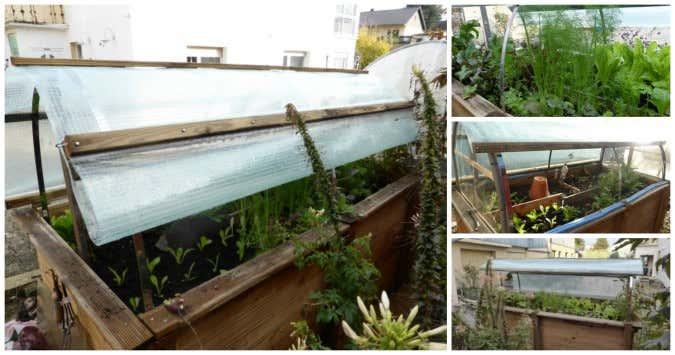 vom hochbeet zum mini gew chshaus dach selber bauen. Black Bedroom Furniture Sets. Home Design Ideas