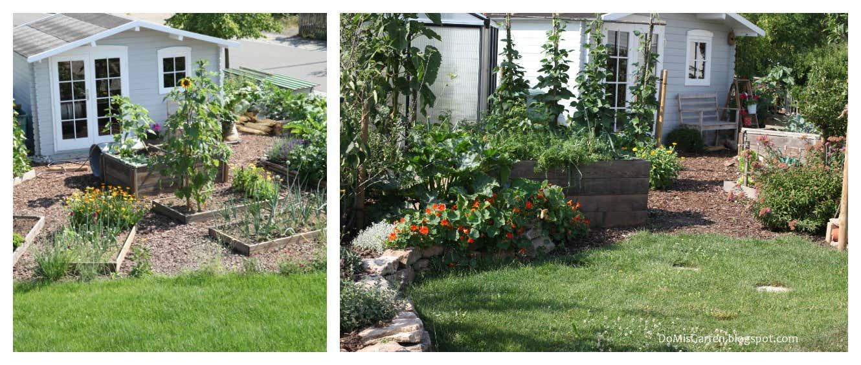 Genüsebeete und Gartenhaus