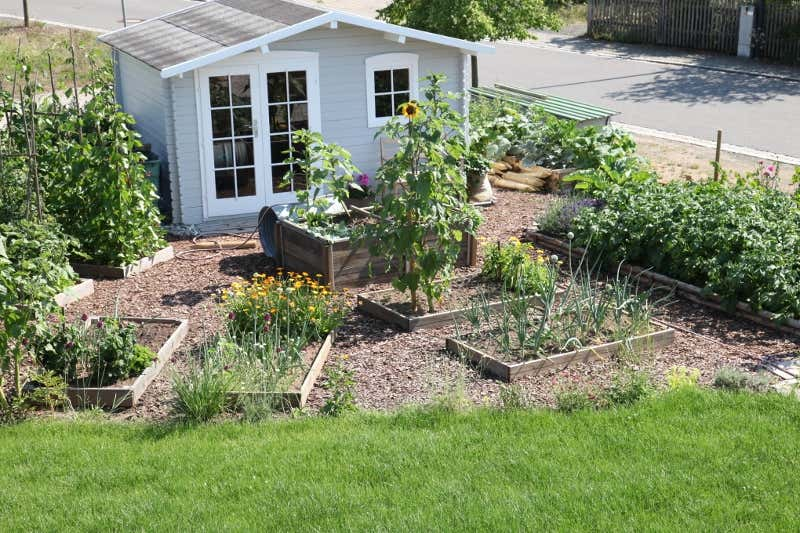 Beete Anlegen Inspirationen Fr Ihre Gartengestaltung