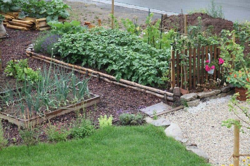 Gartengestaltung wege anlegen