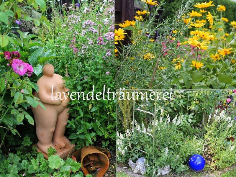Gartenstauden im Blumenbeet