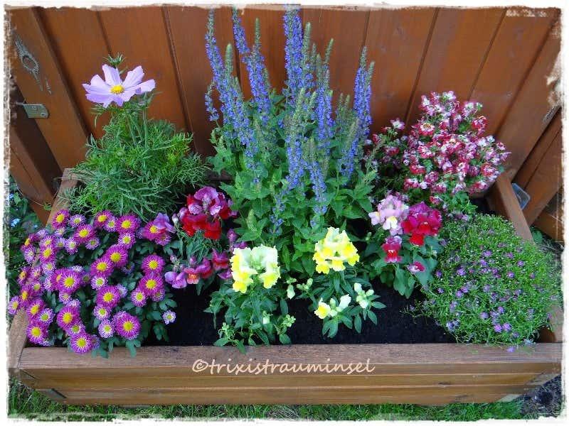 blumenbeet anlegen: traum-ideen für ihr gartenparadies, Garten und Bauen
