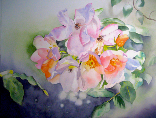 Schattengarten Ein Ort Zum Aquarell Blumen Malen