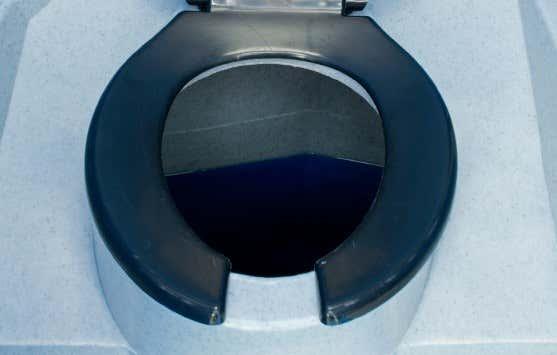 toilette im gartenhaus diese 4 m glichkeiten gibt es. Black Bedroom Furniture Sets. Home Design Ideas