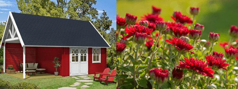 Garten gestalten mit der farbe rot von beet zu gartenhaus for Garten gestalten blumen