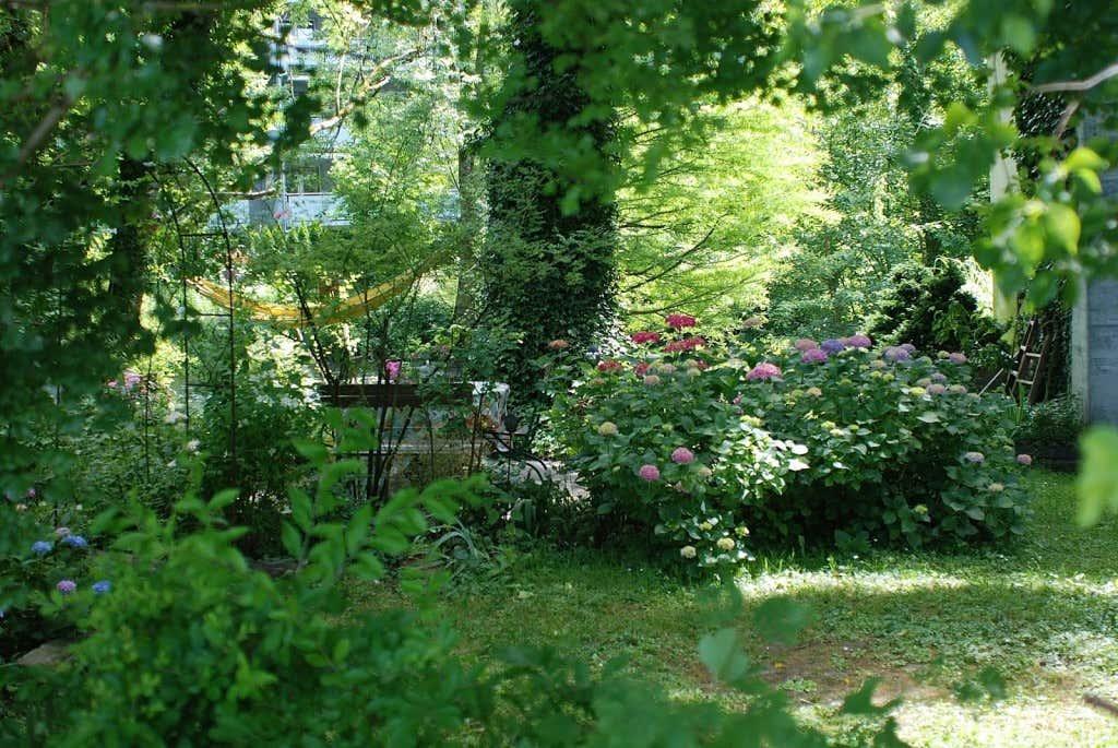 schattengarten ein ort zum aquarell blumen malen. Black Bedroom Furniture Sets. Home Design Ideas