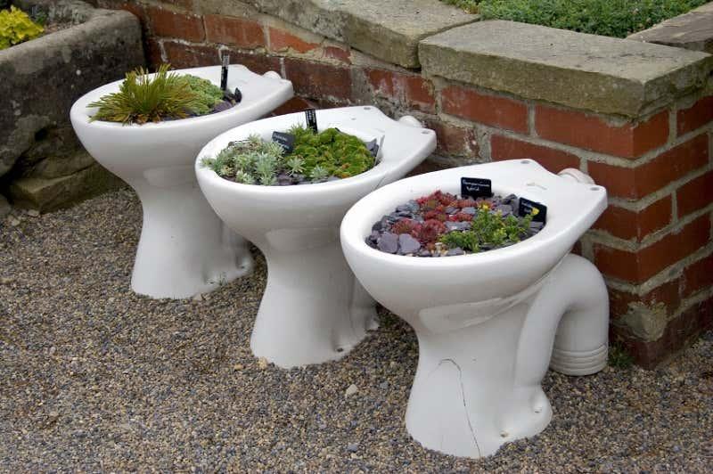 Toilette im Gartenhaus: Diese 4 Möglichkeiten gibt es