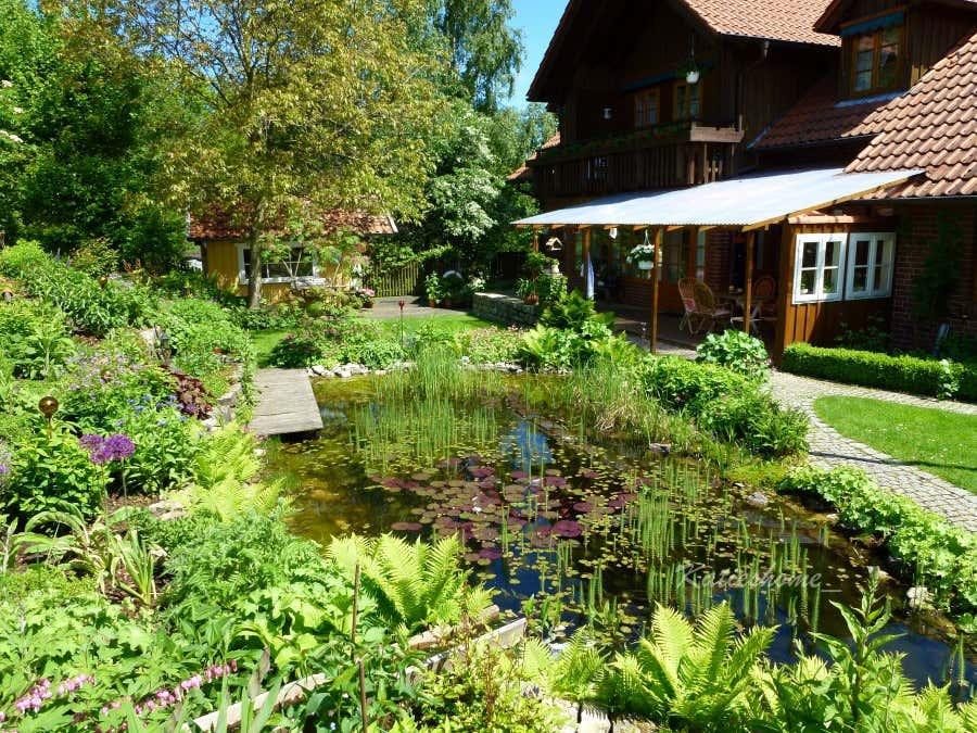 Der Gartenteich wurde bereits vor 14 Jahren angelegt und hat sich zu einem belebten Biotop entwickelt.