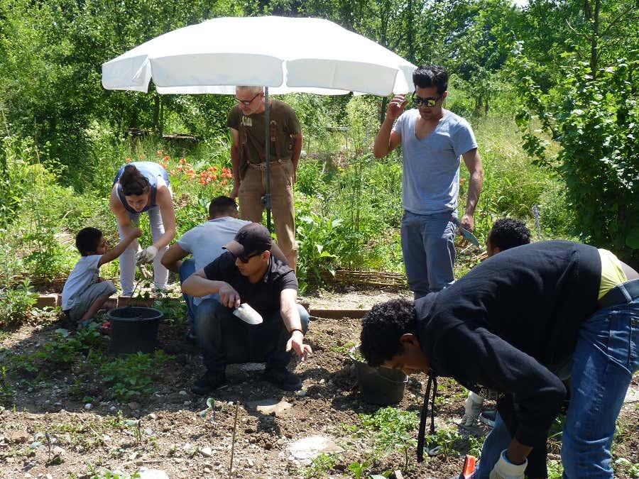 Der Garten als Ort der Begegnung – Das Bunt-Projekt macht Spaß, ist leerreich und stärkt die Gemeinschaft.