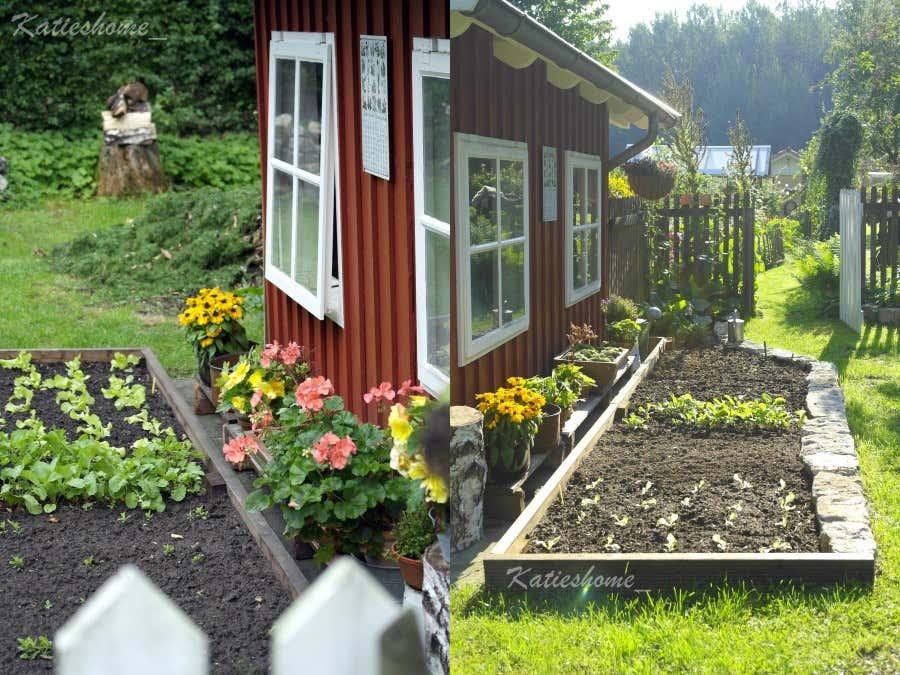 Auf der anderen Seite der Gerätehütte hat Katjas Mann einen neuen Gemüsegarten angelegt.