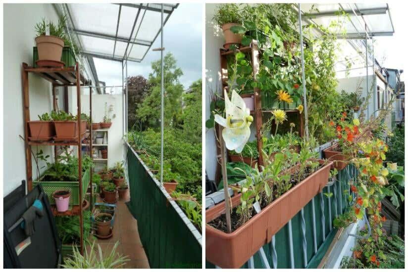 balkonbepflanzung tipps f r den garten auf dem balkon. Black Bedroom Furniture Sets. Home Design Ideas