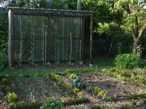 Sommerhaus für Tomaten als Schutz vor Witterung.