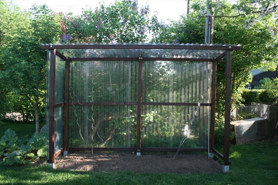 Fabulous Tomatenhaus selbstgebaut: So schütze ich meine Tomaten XA74