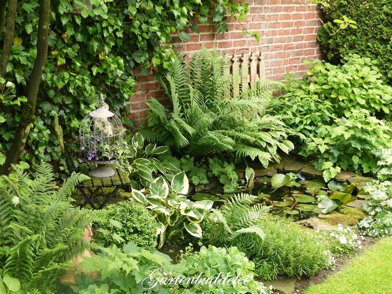 Seerosenteich in Anjas Garten